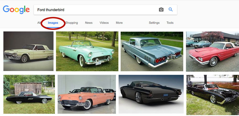 ford thunderbird search results by Columbus website design firm and seo agency Sevell.jpg