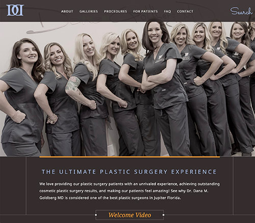 homepage of one of the many plastic surgeon websites we've done