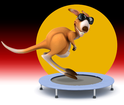 kangaroo on trampoline by Columbus web design firm