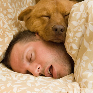 man and dog in bed sleeping about Columbus web design