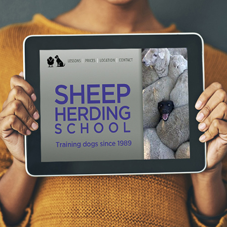 woman holding ipad with sheep herding homepage